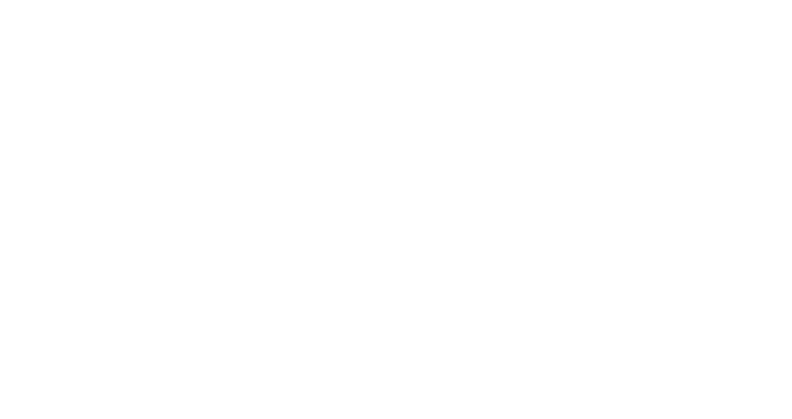 synovis Netzwerke GmbH